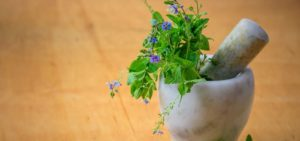 Traditional Chinese Medicine and Nutritional Herbology
